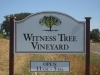 Witness Tree Vineyard\'s new sign in 2012