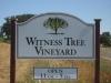 Witness Tree Vineyard\'s new sign in 2012